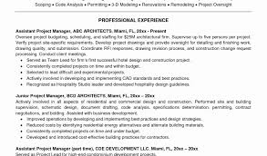 capital project manager sample resume awesome bank branch manager