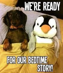 Bedtime Meme - bedtime story time meme slapcaption com weiner life pinterest