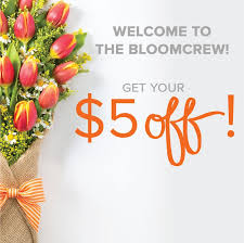flowers delivery express a better florist singapore flower delivery
