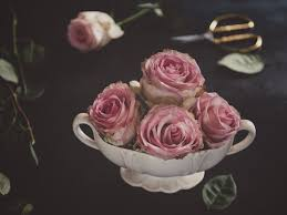 roses and little bundt cakes vanessa lewis