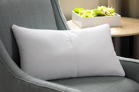 Pillow Store Travel Blanket Westin Hotel Store