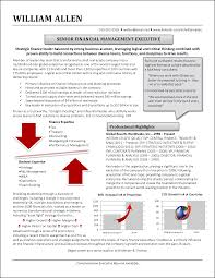Profile Examples For Resumes Financial Mgmt Exec Png