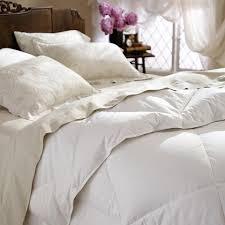 Down Comforter Protector Comforters U2013 Broadwaylane