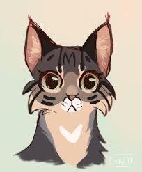 bobcat sketch by lokidrawz on deviantart