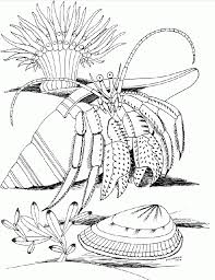 rock coloring page kids coloring