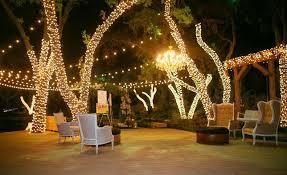 pictures string lights dallas landscape lighting
