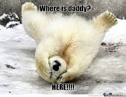 Polar Bear Meme - cute polar bear by mausherbarca meme center