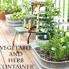 795 best herbs images on pinterest gardening organic gardening
