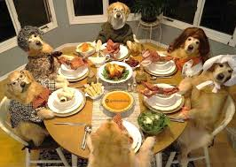 dogs at dinner table these dogs celebrating thanksgiving will leave you feeling warm and