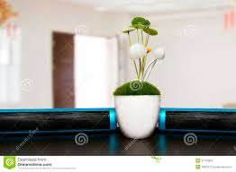 good plants for office desk