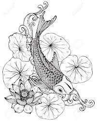 hand drawn vector illustration of koi fish japanese carp with