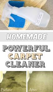 best 25 carpet cleaners ideas on pinterest diy carpet cleaner
