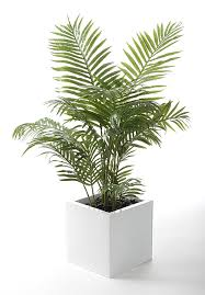 closer to nature 4 ft artificial areca palm tree amazon co uk