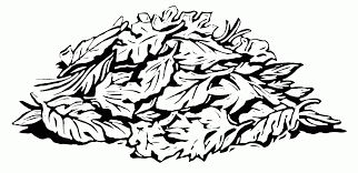 bunch of leaves sketches line drawings of leaves clipart best