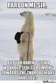 Polar Bear Meme - well mannered polar bear by awesomeone meme center