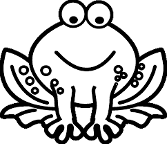amphibian coloring pages wecoloringpage