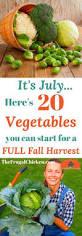 23 Diagrams That Make Gardening by 23 Diagrams That Make Gardening So Much Easier Veggies And Yards