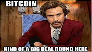 Internet Memes - 22 internet memes that let you relive bitcoin s historic rise