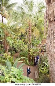 Okc Botanical Gardens by Myriad Botanical Gardens Stock Photos U0026 Myriad Botanical Gardens