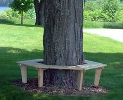 17 best tree bench plans images on pinterest tree bench bench