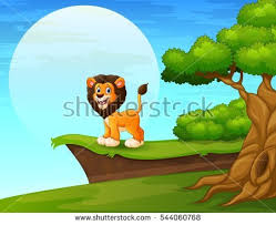 cartoon lion stock images royalty free images u0026 vectors