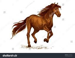 mustang horse brown arabian mustang horse running racing stock vector 563803852