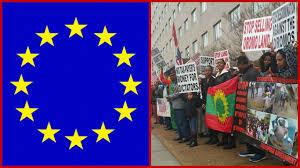 Oromo Flag Habtamu Utgivare På Habtamu Bogale Sida 10 Av 16
