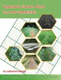 planning a vegetable garden layout for row gardening