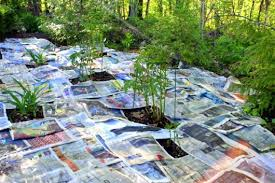 How To Mulch Flower Beds How I Smother Weeds With Newspaper