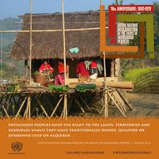 unpfii sixteenth session 24 april to 5 may 2017 united nations