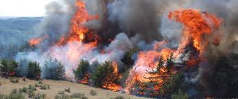 Wild Fire Danger by The Statewide Wildfires In California Continue To Blaze Superior