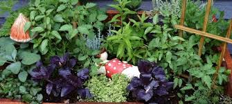 Potted Herb Garden Ideas Container Herb Garden Plant A Container Garden By Following These