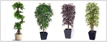 amazing artificial trees plants and topiaries delivered across