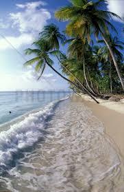 33 best tapeter images on pinterest photo wallpaper wall mural tropical seashore wall mural photo wallpaper photowall