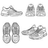 vector sketch illustration pair of running shoes front view