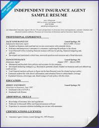 Sample Underwriter Resume by Insurance Resume Cv01 Billybullock Us