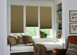 Pleated Shades For Windows Decor Energy Efficient Window Treatments Budget Blinds