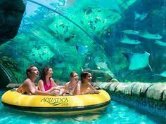 best 25 family vacation spots ideas on family trips