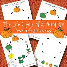 life cycle of a pumpkin worksheet itsy bitsy fun