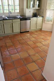 Kitchen Floor Ideas Pinterest Dusty Coyote Stripping And Sealing A Saltillo Tile Floor