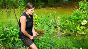 planning u0026 maintaining an edible garden hummingbird u0026 butterfly