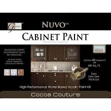 Nuvo Cabinet Paint Reviews by Cabinet Painting Kit Best Home Furniture Decoration