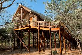 Treehouse Europe - airbnb rentals houses apartments crazy homes to rent