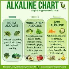 34 best yum alkaline diet images on pinterest alkaline diet