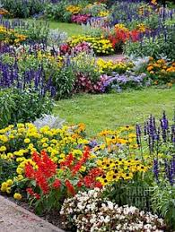 Pictures Of Gardens And Flowers Plan To Imitate Larkspur Peony Coreopsis Silver Dianthus