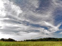 pattern of white clouds in streaks cirrus cloud wikipedia
