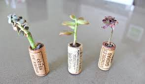 how to recycle wine corks into mini planters evolve