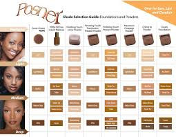 light medium skin tone finishing touch translucent loose powder light medium posner
