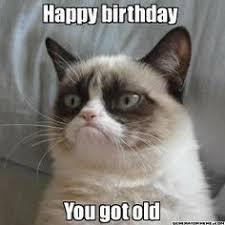 Grumpy Cat Meme Creator - grumpy grumpy cat pinterest grumpy cat