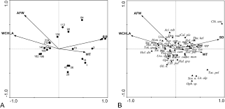 the colonization and succession patterns of the periphytic ciliate